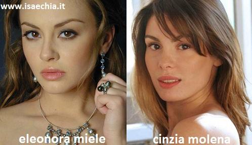 Somiglianza tra Eleonora Miele e Cinzia Molena
