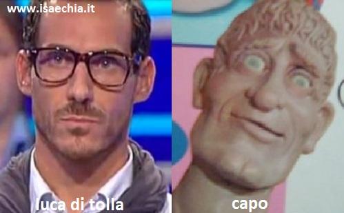 Somiglianza tra Luca Di Tolla e Capo