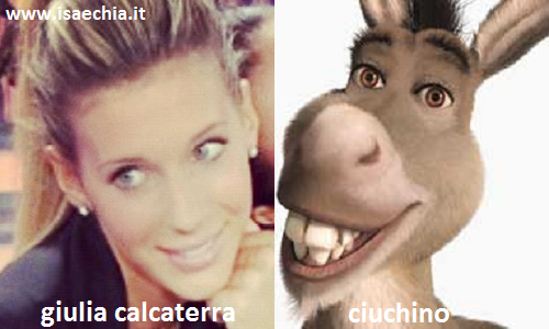 Somiglianza tra Giulia Calcaterra e Ciuchino di 'Shrek'