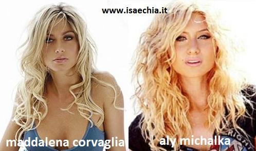 Somiglianza tra Maddalena Corvaglia e Aly Michalka