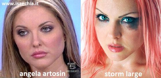 Somiglianza tra Angela Artosin e Storm Large