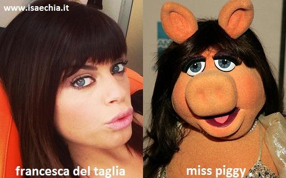 Somiglianza tra Francesca Del Taglia e Miss Piggy
