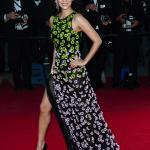 Cannes Film Festival 2013 - Zhang Ziyi