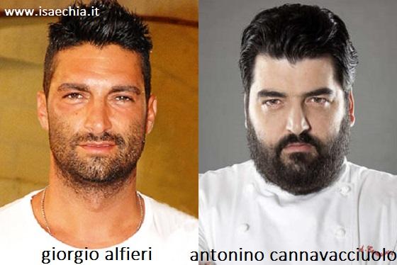 Somiglianza tra Giorgio Alfieri e Antonino Cannavacciuolo
