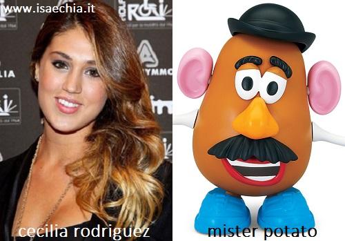 Somiglianza tra Cecilia Rodriguez e Mister Potato