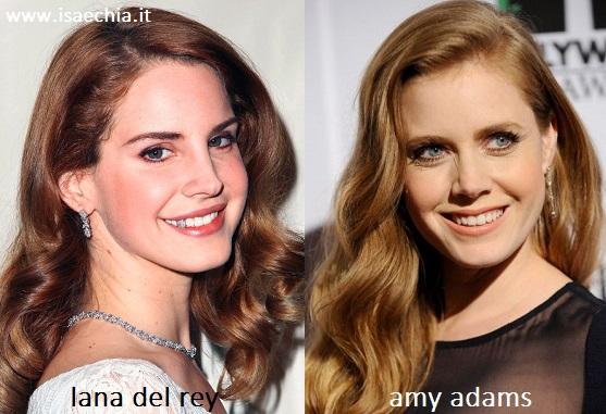Somiglianza tra Lana Del Rey e Amy Adams