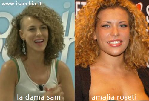 Somiglianza tra la dama Sam e Amalia Roseti