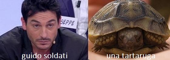 Somiglianza tra Guido Soldati e una tartaruga