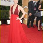 Golden Globes 2014 - Amy Adams