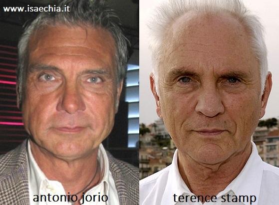 Somiglianza tra Antonio Jorio e Terence Stamp
