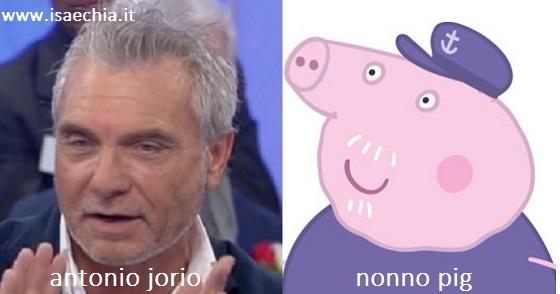 Somiglianza tra Antonio Jorio e Nonno Pig