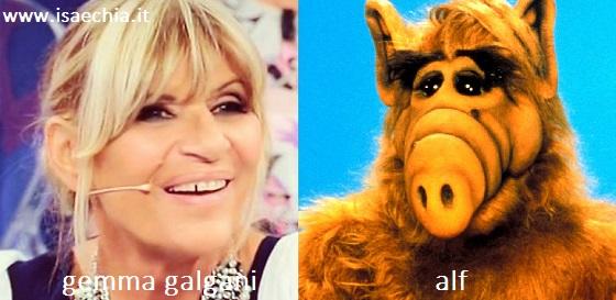 Somiglianza tra Gemma Galgani e Alf