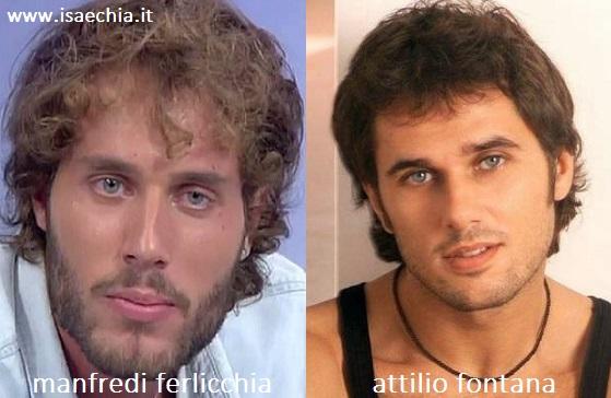 Somiglianza tra Manfredi Ferlicchia e Attilio Fontana