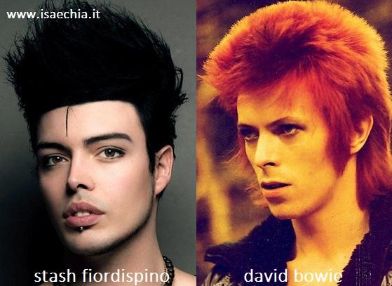 Somiglianza tra Stash Fiordispino e David Bowie