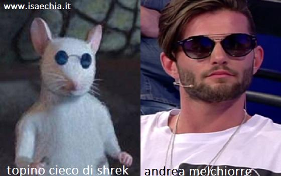 Somiglianza tra Andrea Melchiorre e il topino cieco di 'Shrek'