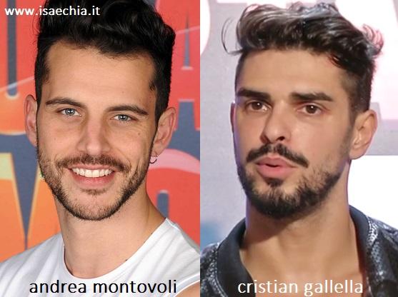 Somiglianza tra Andrea Montovoli e Cristian Gallella
