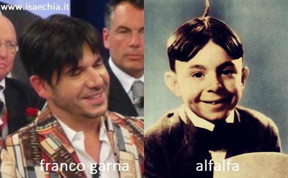 Somiglianza tra Franco Garna e AlfaAlfa