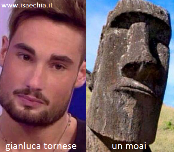 Somiglianza tra Gianluca Tornese e un Moai