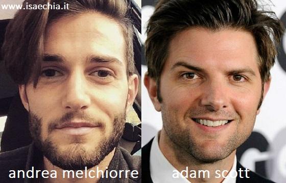 Somiglianza tra Andrea Melchiorre e Adam Scott