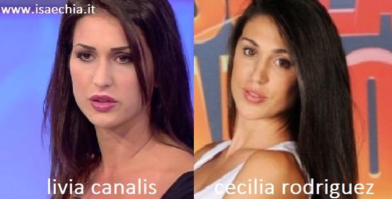 Somiglianza tra Livia Canalis e Cecilia Rodriguez