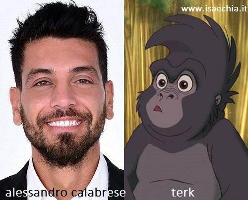 Somiglianza tra Alessandro Calabrese e la scimmietta Terk