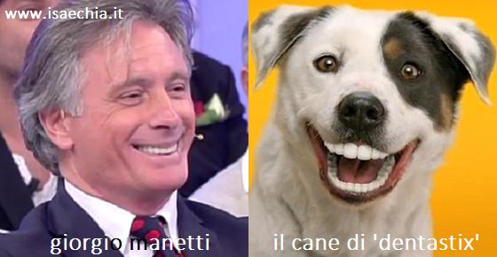 Somiglianza tra Giorgio Manetti e il cane dello spot 'Dentastix'
