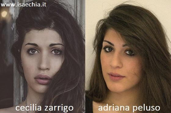 Somiglianza tra Cecilia Zagarrigo e Adriana Peluso