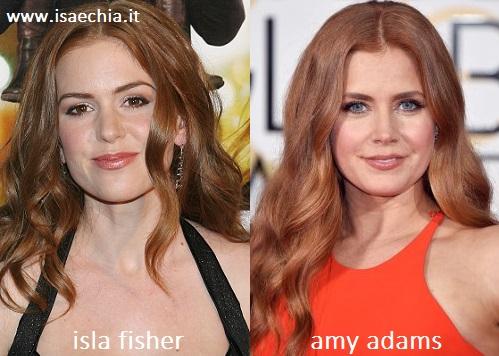 Somiglianza tra Isla Fisher e Amy Adams