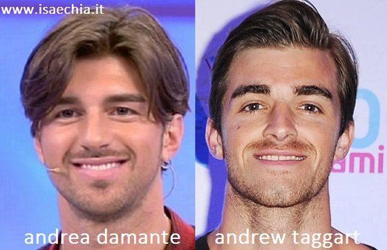 Somiglianza tra Andrea Damante e Andrew Taggart