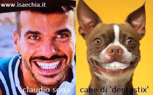 Somiglianza tra Claudio Sona e il cane della Dentastix