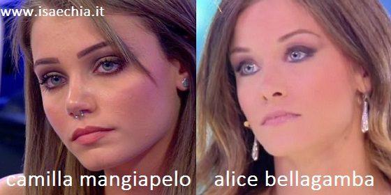 Somiglianza tra Camilla Mangiapelo e Alice Bellagamba