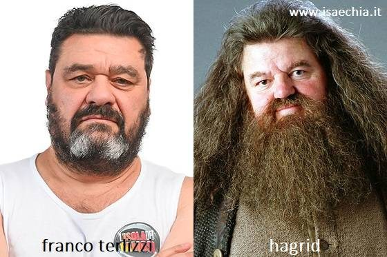 Somiglianza tra Franco Terlizzi e Hagrid di 'Harry Potter'