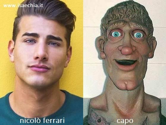 Somiglianza tra Nicolò Ferrari e Capo di 'Art Attack'