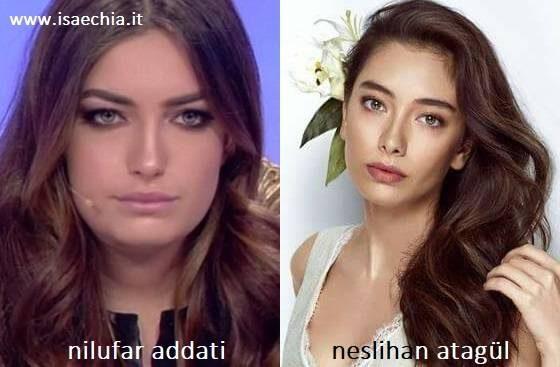Somiglianza tra Nilufar Addati e Neslihan Atagül